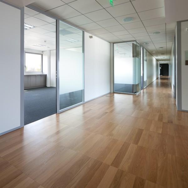 Zoom Meeting Rooms Downloads